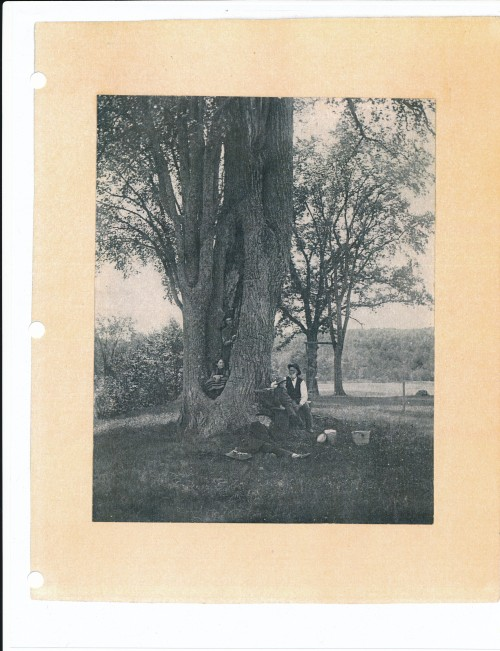 A picture, possibly of Benjamin's grandson Daniel Spaulding, who remained in Townsend on the family property (man in white shirt).  Daniels's daughter became a teacher and moved to Gold Hill Colorado, where this picture was among her family documents.  Children and other man unknown.