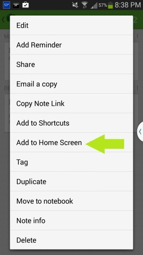 "Many applications will pull up a ""Add to home screen"" choice for the particular picture or document you are on."