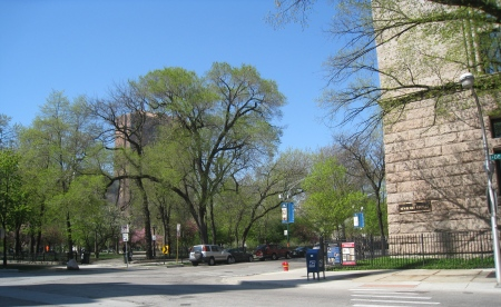 View of Washington Square Park across the street from the Newberry